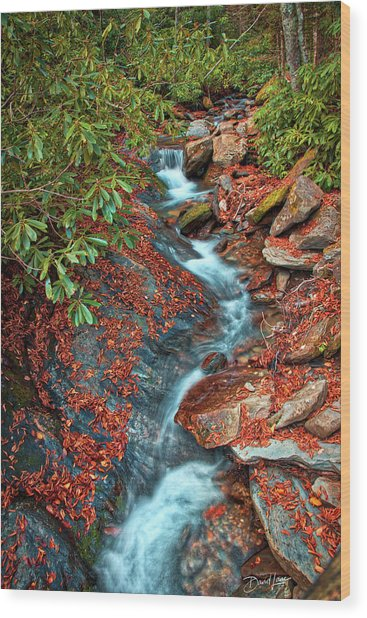 Wood Print featuring the photograph Zig Zag Mountain Stream by David A Lane