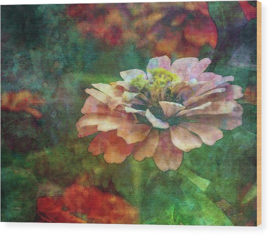 Zinnia Impression 1120 Idp_2 Wood Print
