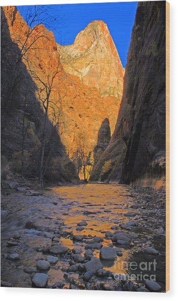 Zion Wood Print by Dennis Hammer