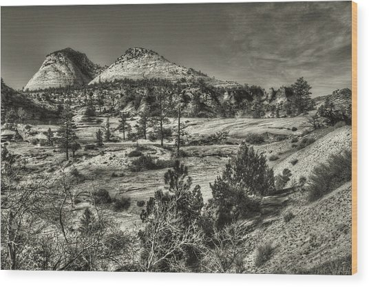 Zion National Park Along Rt 9 Wood Print