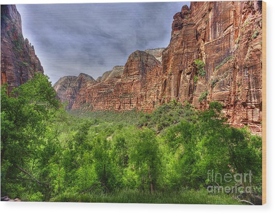 Zion View Of Valley With Trees Wood Print