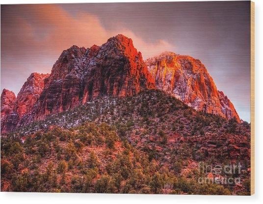 Zion's Fire V Wood Print by Irene Abdou