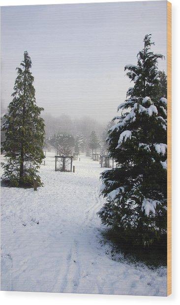 30/01/19  Rivington. Memorial Arboretum. Wood Print