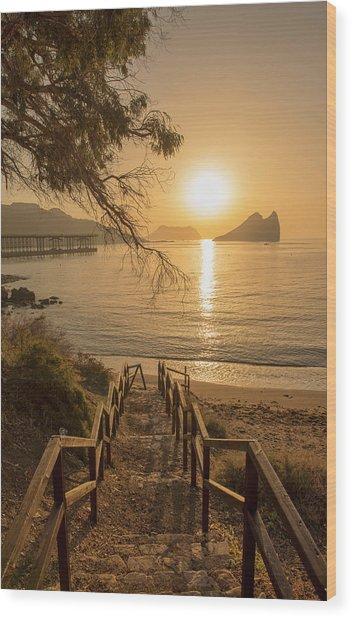 Access To The Beach At Dawn Wood Print