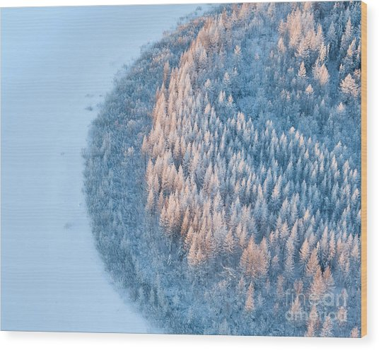 Aerial View Of Forest River In Time Of Wood Print