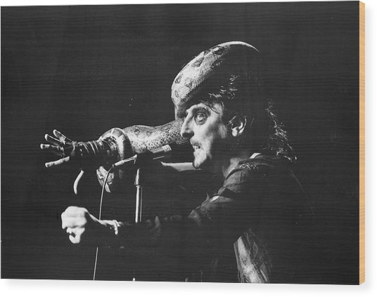 Alice Cooper At Msg Wood Print by Fred W. McDarrah