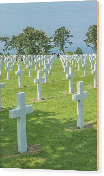 American Cemetery, Colleville Wood Print by Jim Engelbrecht