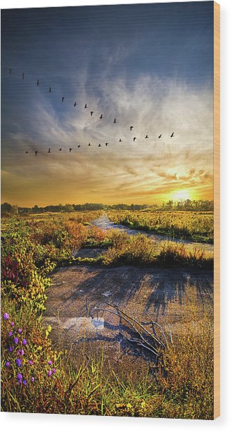 Wood Print featuring the photograph An Old Road by Phil Koch
