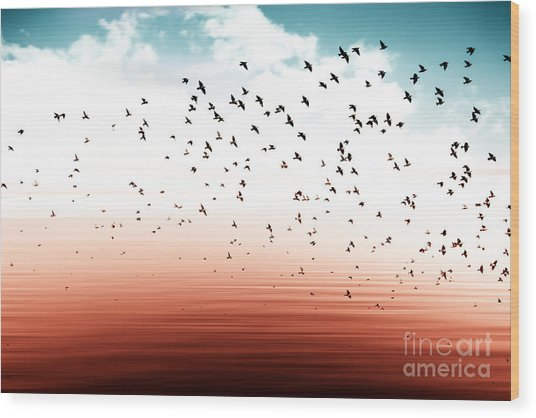 Birds Flying And Abstract Sky ,spring Wood Print