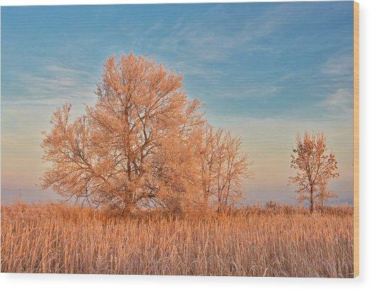 Canada, Manitoba, Lorette Wood Print by Jaynes Gallery