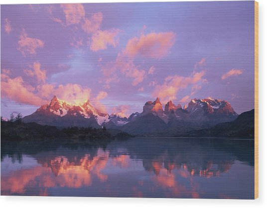 Chile, Patagonia, Torres Del Paine Np Wood Print
