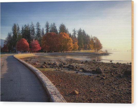 Colorful Autumn Foliage At Stanley Park Wood Print