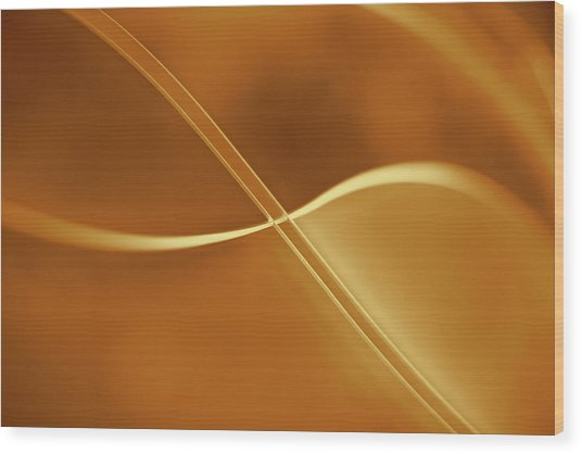 Curved Intersecting Lines Wood Print by Ralf Hiemisch