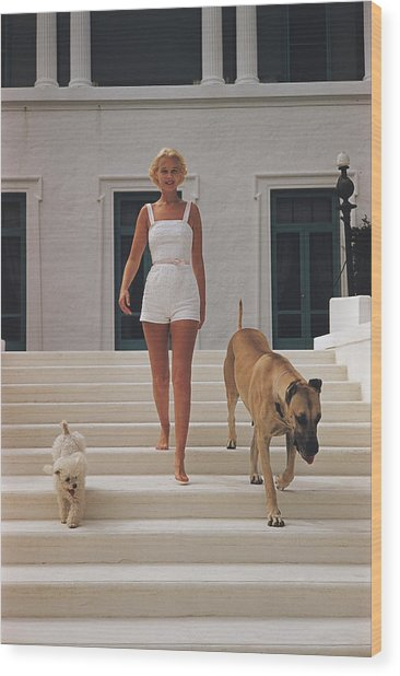 C.z. Guest Wood Print by Slim Aarons