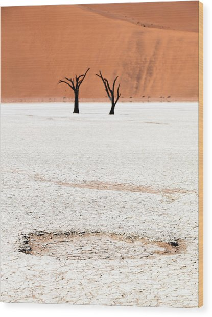 Dead Black Trees In The Desert Wood Print