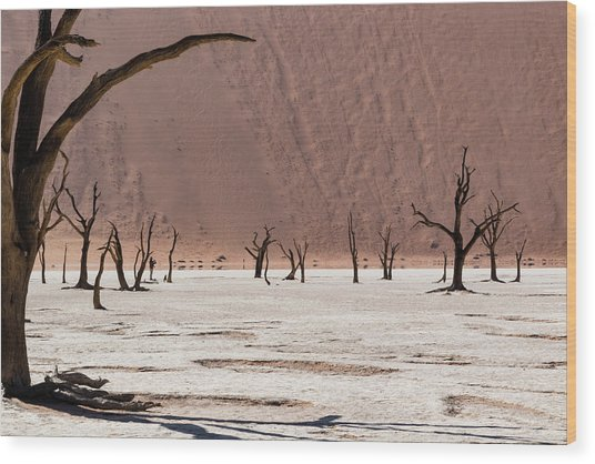 Deadvlei Desert Wood Print