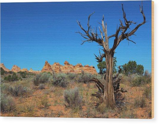 Desert Landscape Wood Print by Lucynakoch
