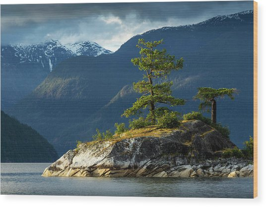 Desolation Sound, Bc, Canada Wood Print