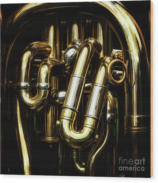 Detail Of The Brass Pipes Of A Tuba Wood Print