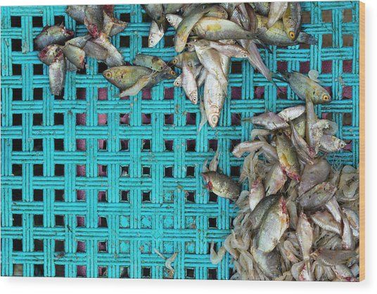 Wood Print featuring the photograph Fish At The Market by Nicole Young