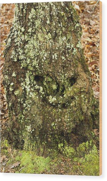 Forest Troll Wood Print