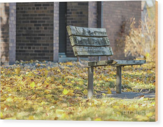 Just A Bench Wood Print
