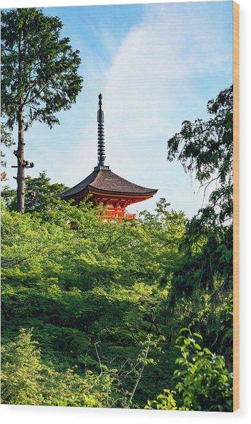 Kyoto, Japan Taisan-ji Temple Nearby Wood Print by Miva Stock