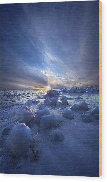 Wood Print featuring the photograph Letting Go by Phil Koch