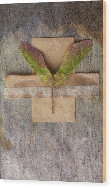 Maple Tree Seed Pod Wood Print