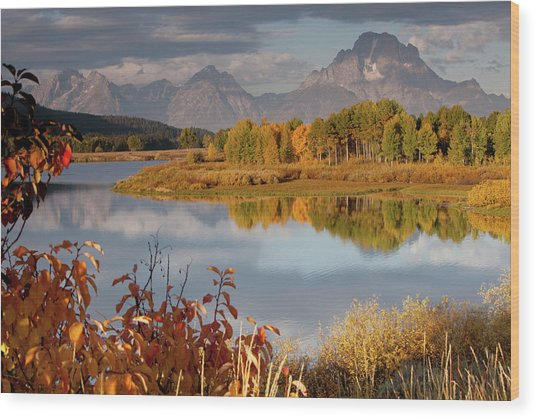 Mt Moran And Snake River In Autumn Wood Print