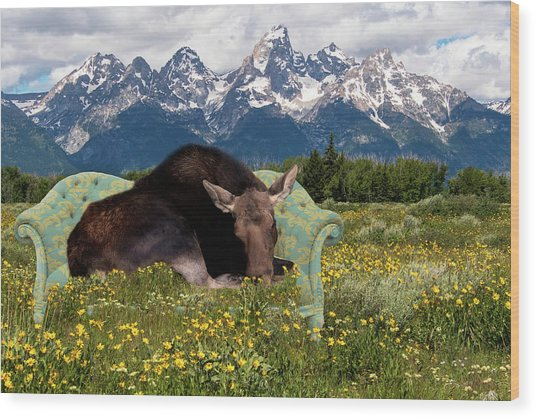 Nap Time In The Tetons Wood Print