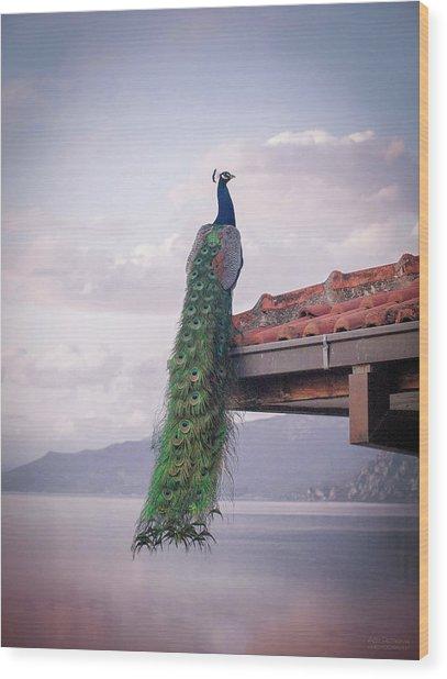 Ochrid Lake Wood Print