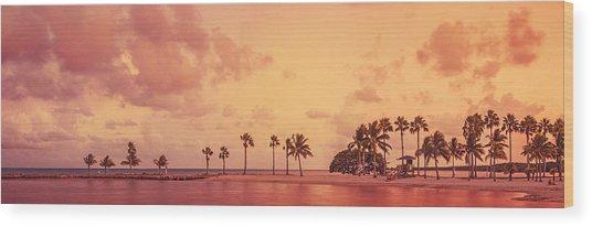 Panorama Beach Miami Wood Print by Thepalmer