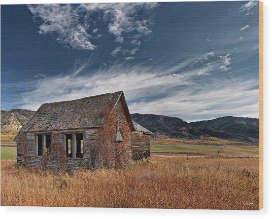 Pioneer Cabin  Wood Print by Leland D Howard