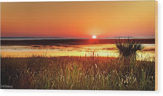 Port Royal Morning Wood Print