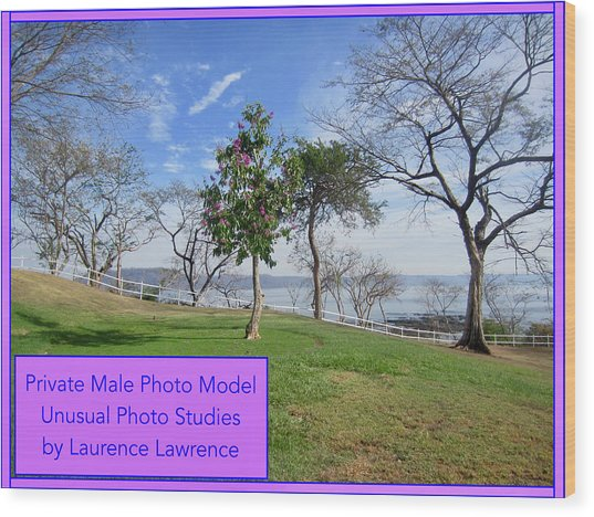 Private Photo Model Bn Wood Print