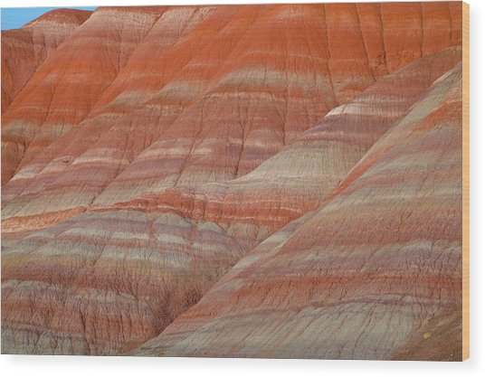 Sandstone, Grand Staircase Escalante Wood Print by Eastcott Momatiuk