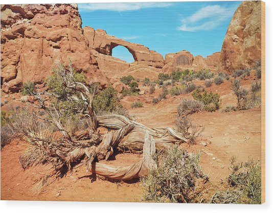Skyline Arch, Arches National Park Wood Print by Fotomonkee