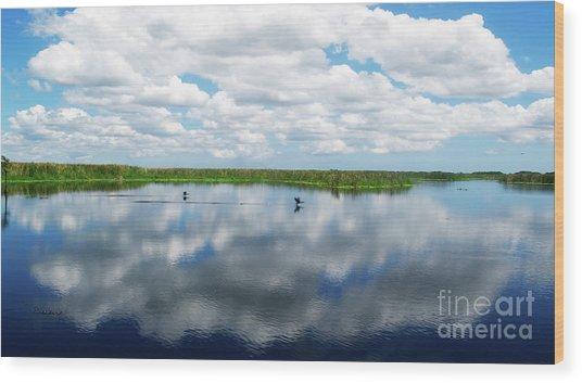 Skyscape Reflections Blue Cypress Marsh Near Vero Beach Florida C6 Wood Print