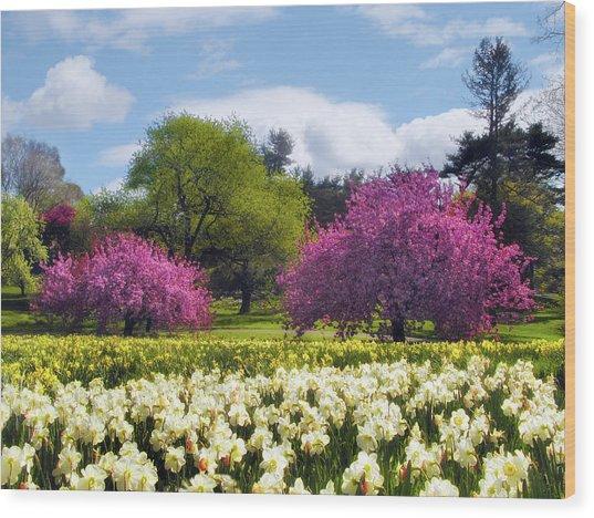 Spring Fever Wood Print
