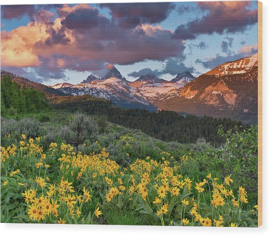 Spring Sunset In The Tetons Wood Print by Leland D Howard