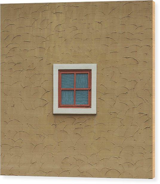 Texas Windows 3 Wood Print
