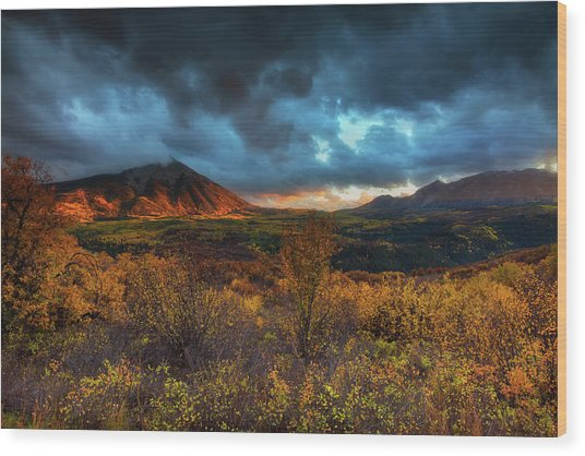Wood Print featuring the photograph The Last Light by John De Bord