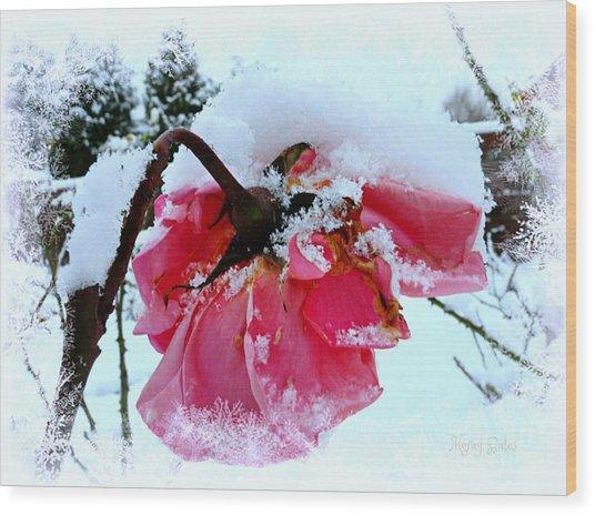 The Last Rose Wood Print