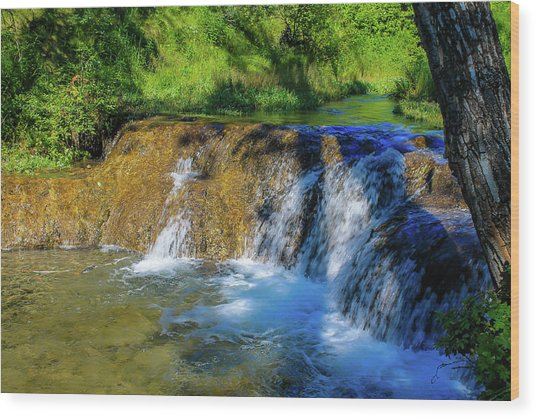 The Springs In It's Summer Green, Big Hill Springs Provincial Re Wood Print