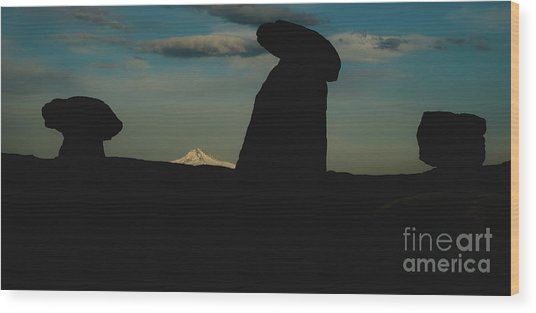 Turkish Landscapes With Snowy Mountains In The Background Wood Print