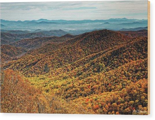 View From Blue Springs Gap Wood Print
