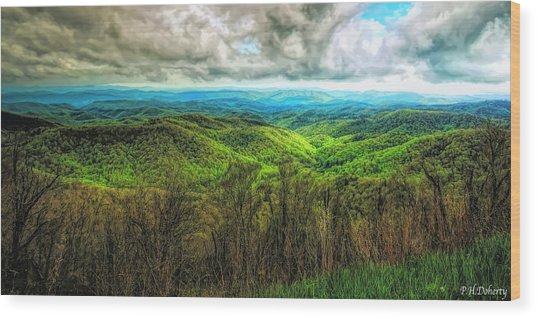 Views From The Parkway #1 Wood Print