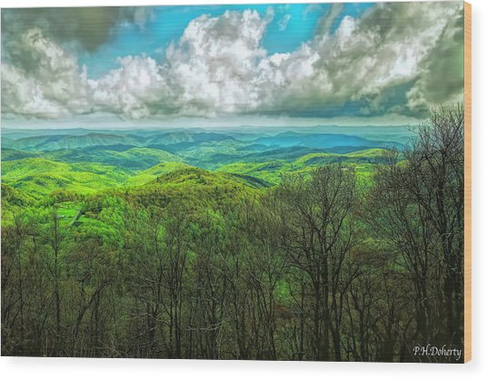 Views From The Parkway #4 Wood Print