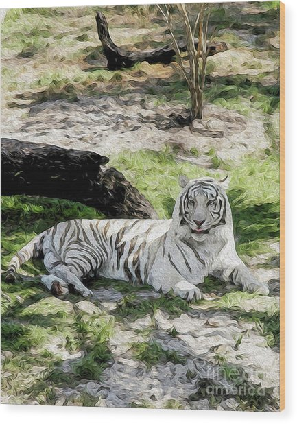 Wood Print featuring the digital art White Tiger At Rest by Kenneth Montgomery
